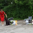 24.06.18. (14 мес.)  J.CAC, Best J., BOB,  BIS JUNIOR – 1, BIG II – 1, BEST in SHOW - 2 !!!